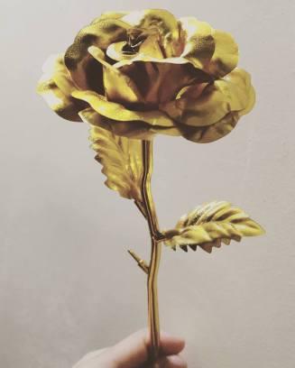 """The aliw """"golden flower"""""""