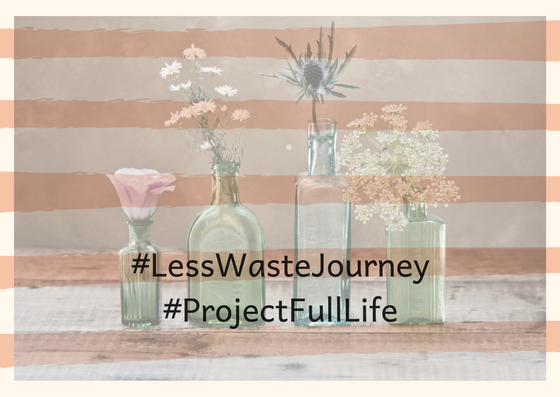 less waste journey cover